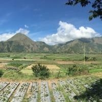 Bali - Deel 5 - Sengiggi op Lombok, scooter rijden en op de Mount Rinjani vulkaan